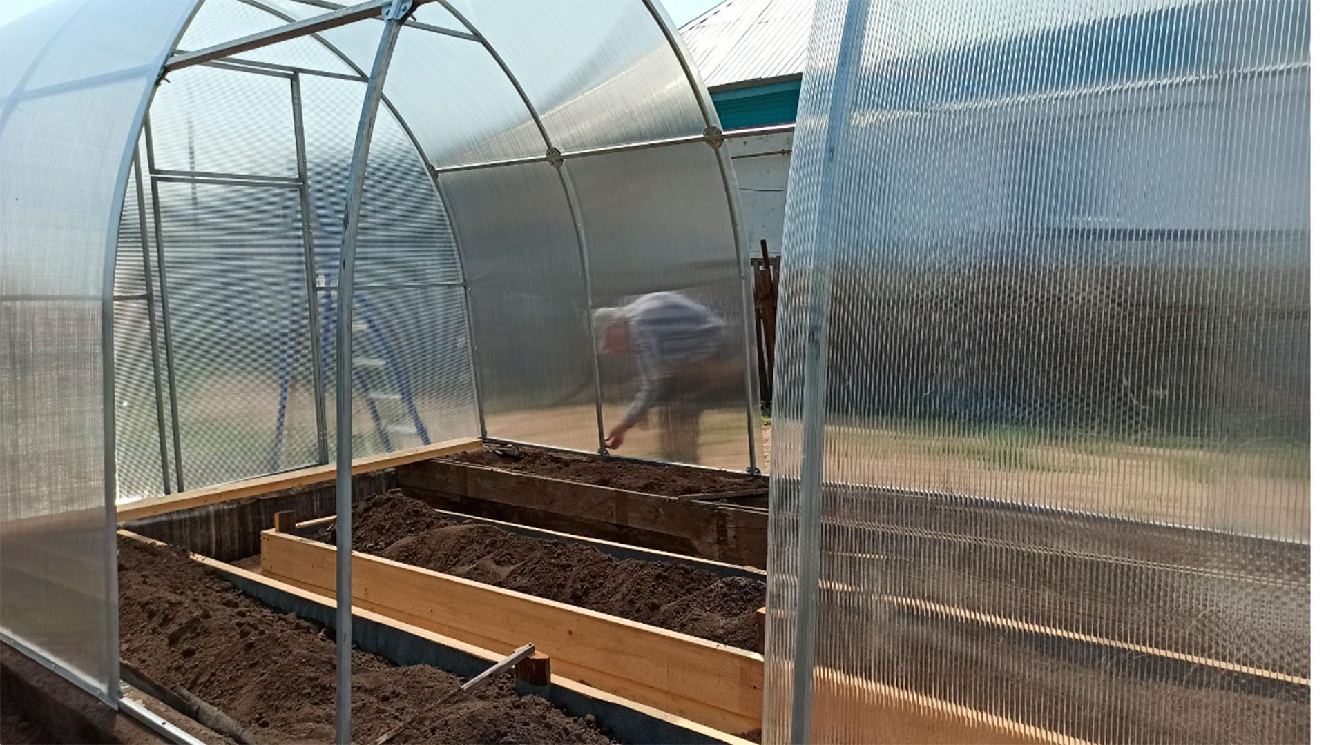 6 метровая теплица своими руками для помидоров